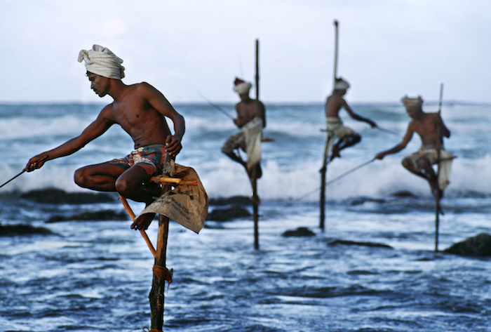 15_Steve McCurry, Stilt Fishermen, South Coast, Sri Lanka, 1995, Chromogenic print on Fuji Crystal Archive paper, 20 x 24 inches