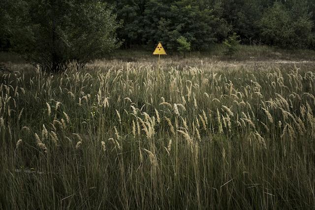 Teenagers of Chernobyl grew up.