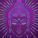 ニュージーランド「7日間ぶっ通しの瞑想体験」。 果たして噂どおりトリップ体験はできるのか?<後編>