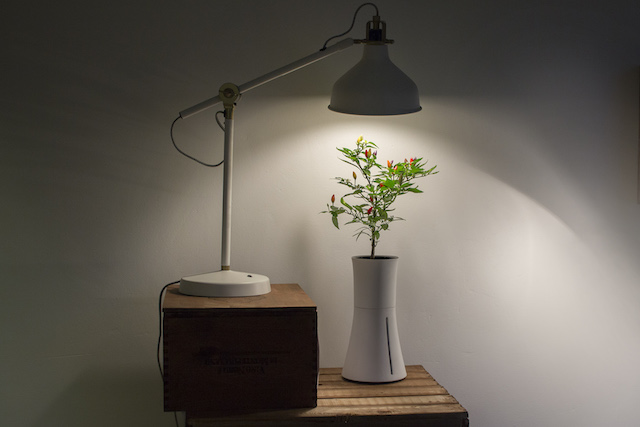 under_lamp_2
