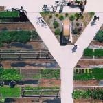 地元の若者たちが、お宅の芝生に「畑インストールします」。新たなアーバン・コミュニティ・ファームとミニマルな食生活