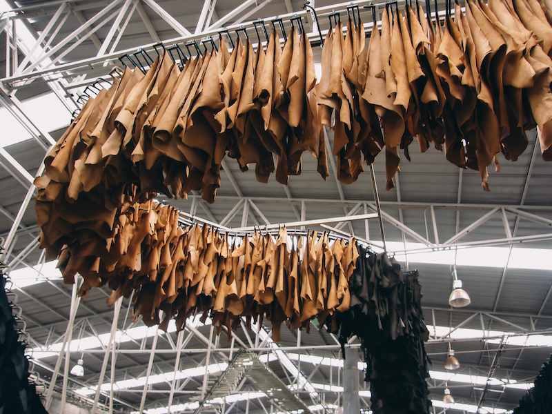Leather Tannery_Factory Section