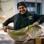 創業200年・世界最大級の老舗魚市場がスタートアップ開始「さっき釣りあげたお魚今日届けます」