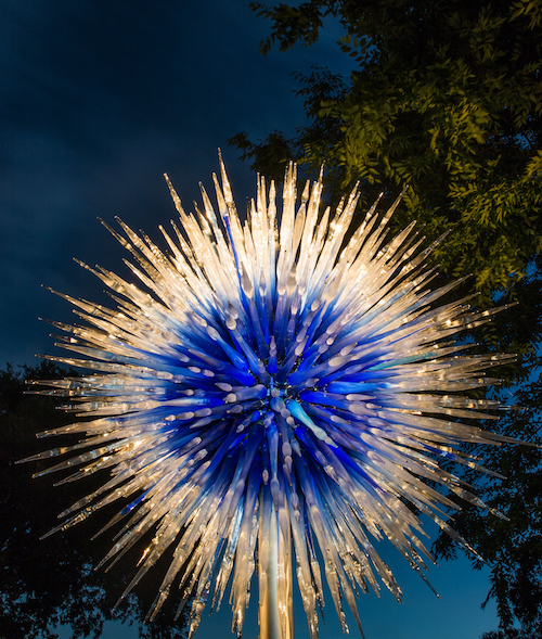 NYBG_CHIHULY-08-Sapphire_Star_at_Night_2016