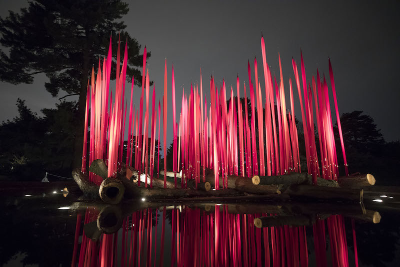 Chihuly at the New York Botanical Gardens