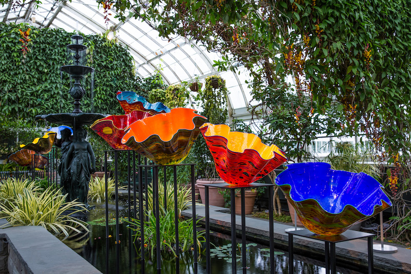 NYBG_CHIHULY_09-Macchia_Forest_2017