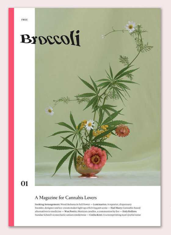 cover_NEWdrop copy