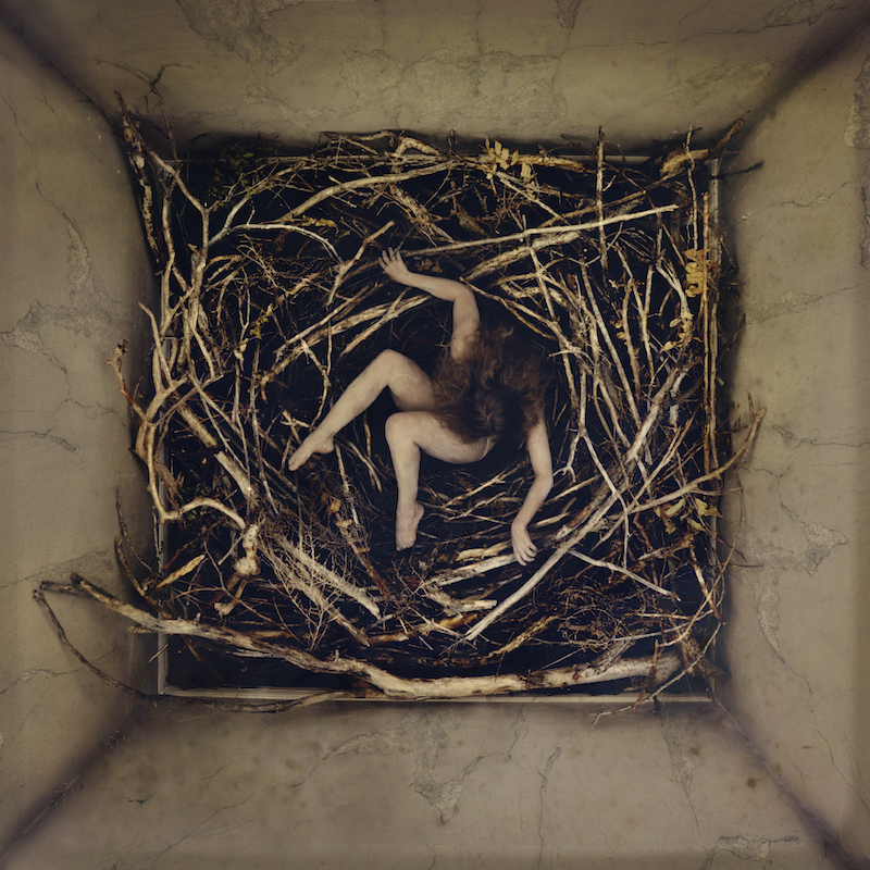 remain (nest)