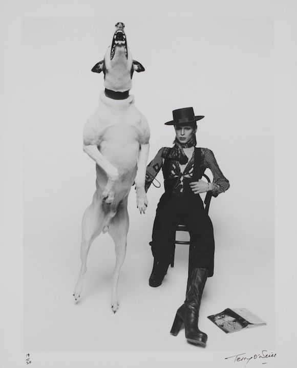 Promotional photograph of David Bowie for 'Diamond Dogs,' 1974