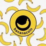 """「ブロックチェーンで高騰するバナナに投資せよ」絶好調な""""バナナコイン""""が実行した小規模農家の支援システム"""