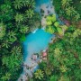 """60万円を払って人が殺到するジャングル「カル・ヤラ」。金を生む""""理想郷""""、謎のサステナブルタウン"""